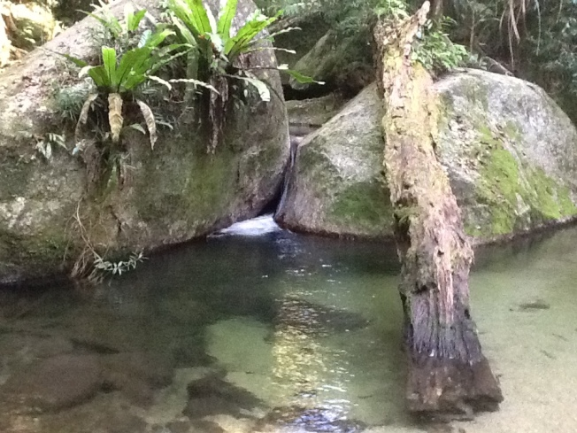 Photo by me At Mossman Gorge